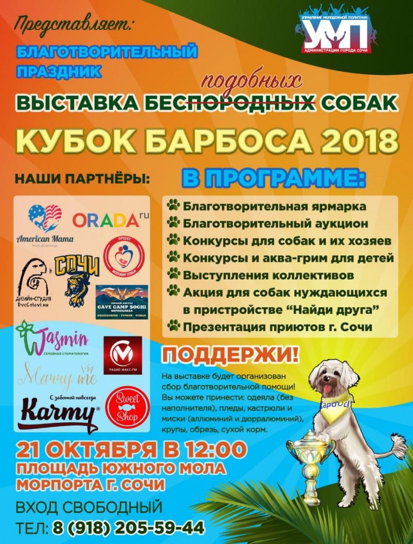 Четвертая ежегодная благотворительная выставка беспородных собак КУБОК БАРБОСА - 2018