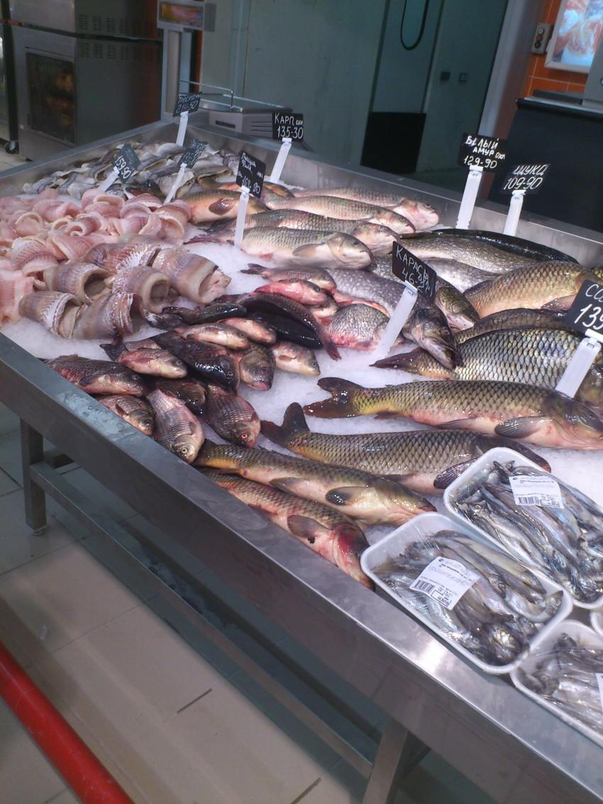 предупреждает ставрополь база свежей рыбы оптом предназначенные для