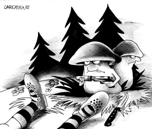 Полицейские из г. Советска помогли грибнику отбиться от грибов