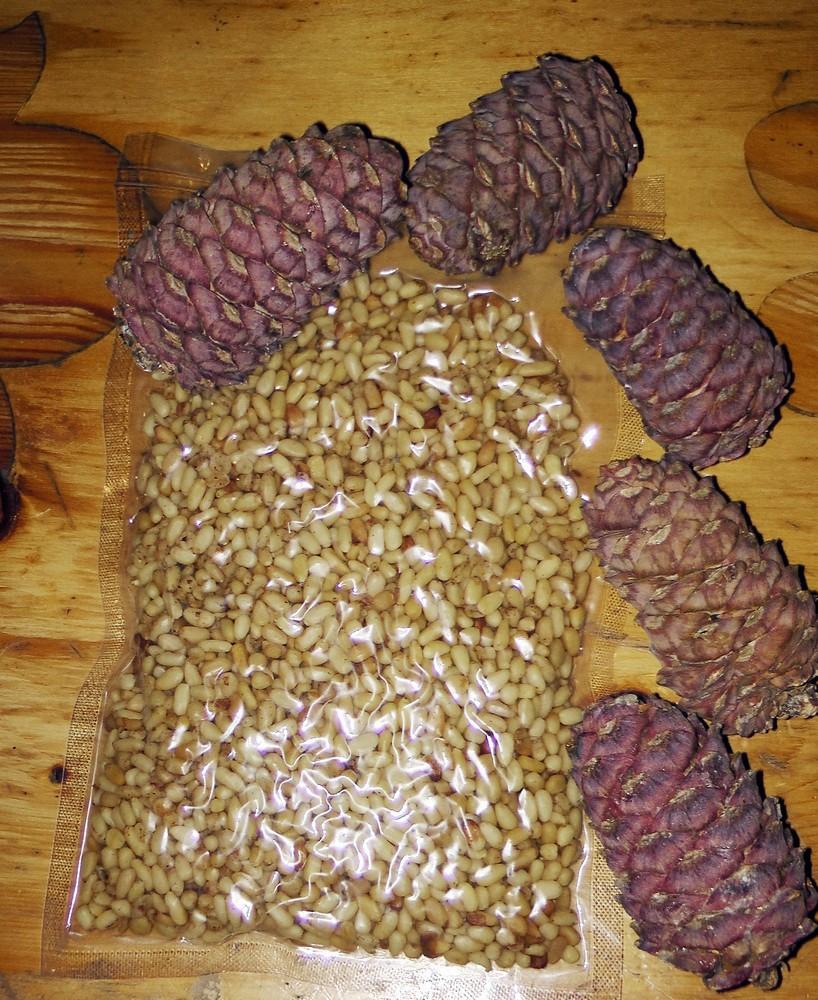 Собирать шишки, полные орехов - к радостной встрече и большой прибыли.