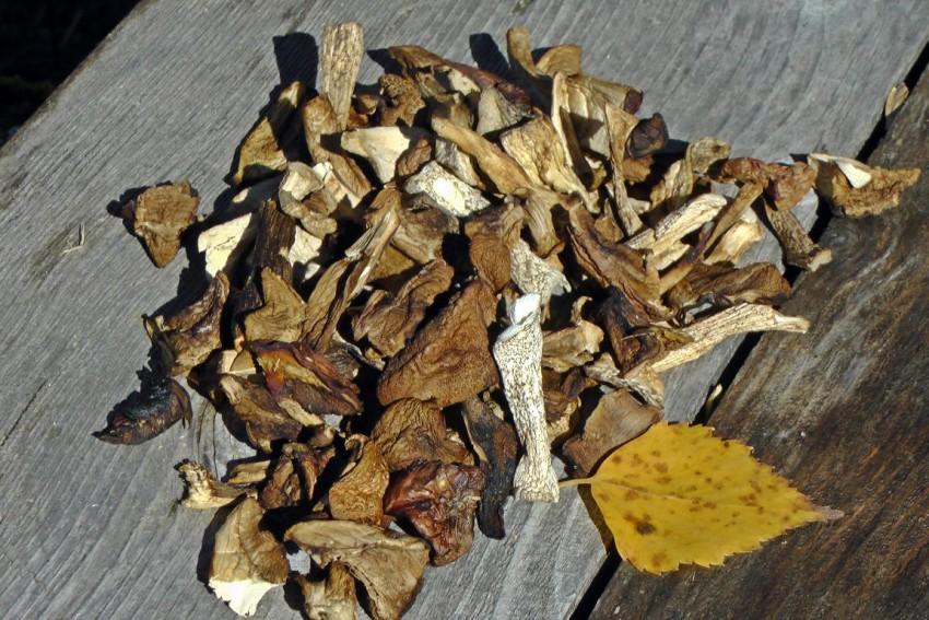 грибочки сушёные