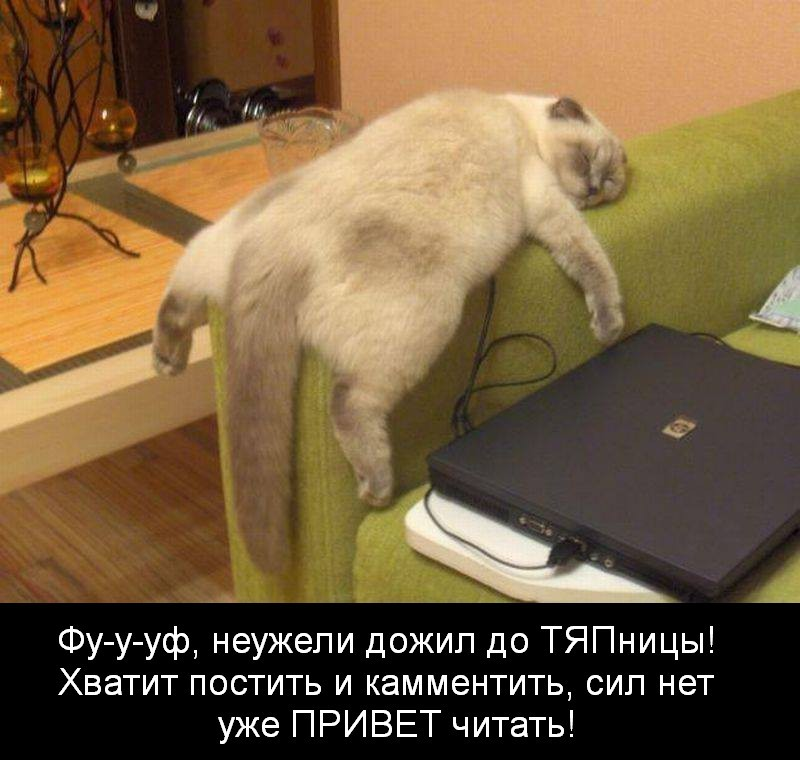 http://www.privetsochi.ru/uploads/images/00/07/06/2013/11/15/027e63.jpg