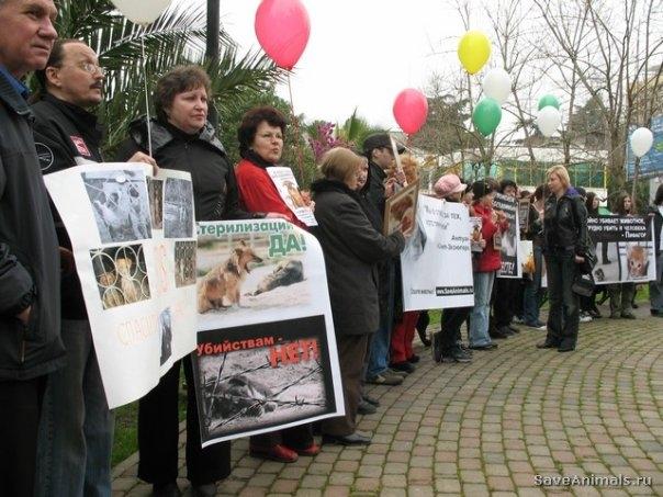 Акция в защиту животных в Сочи