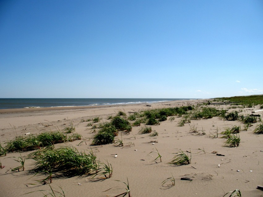 Sakhalin Dunes