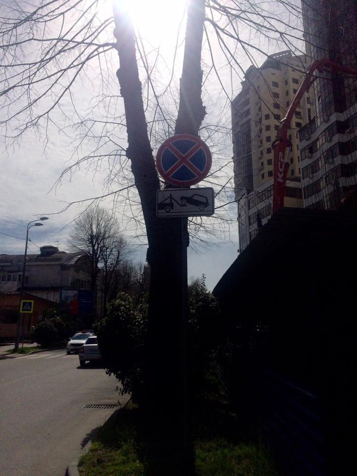 Снять путану 13-я Красноармейская ул. проститутки Красносельское