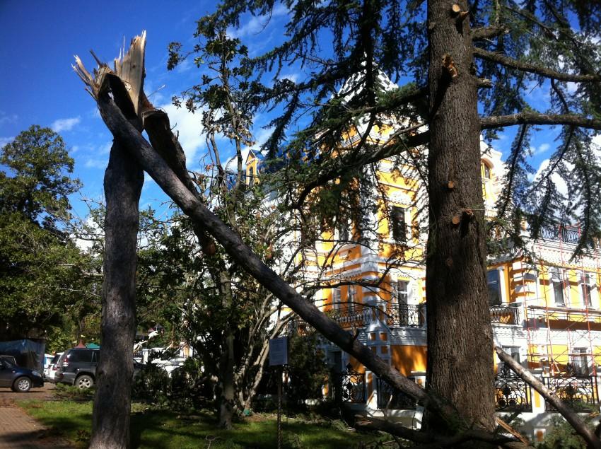 ураган в парке Ривьера