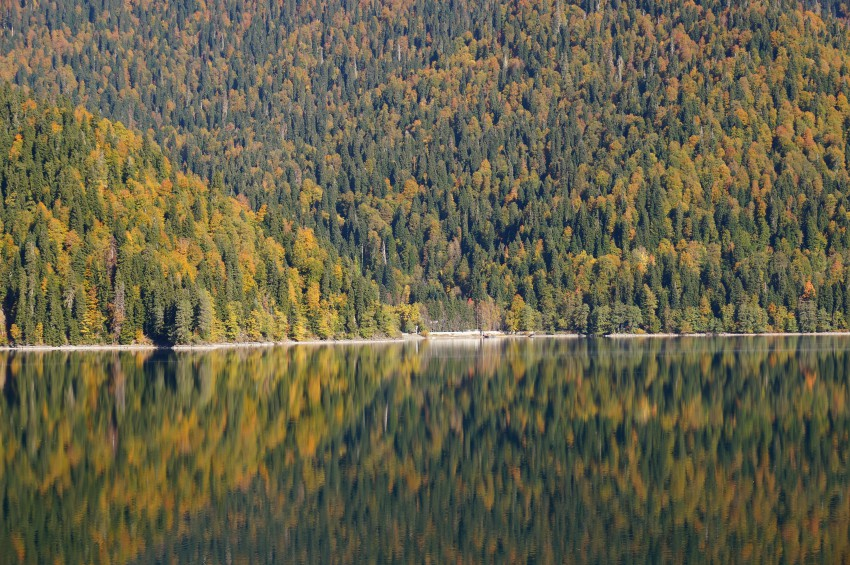 Фотопрогулка: Озеро Рица, Гегский водопад и водопад ...: http://www.privetsochi.ru/blog/TRAVEL/22735.html