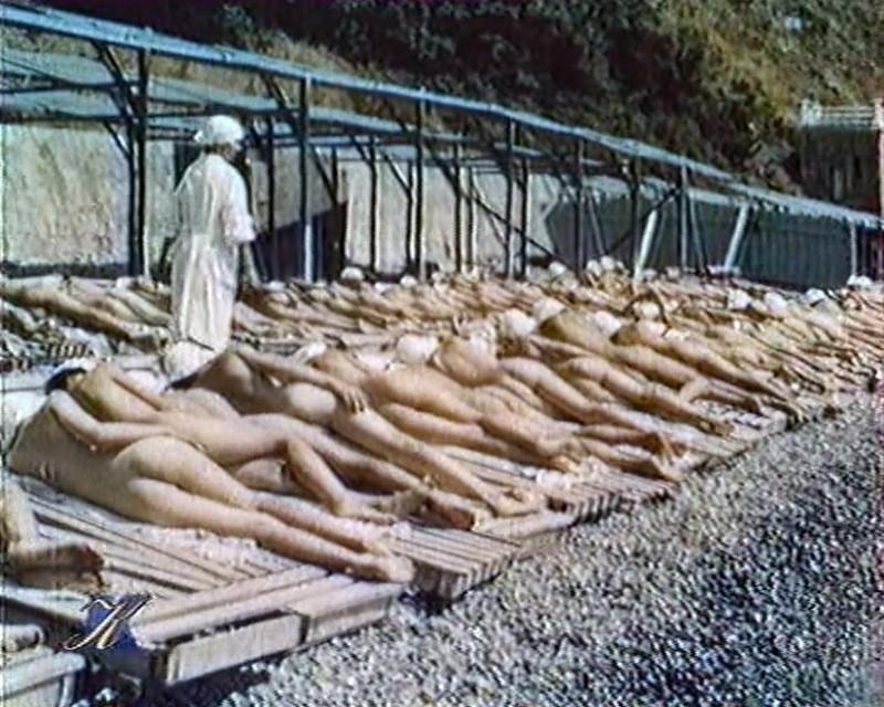 Культ обнаженного тела  Нудизм натуризм