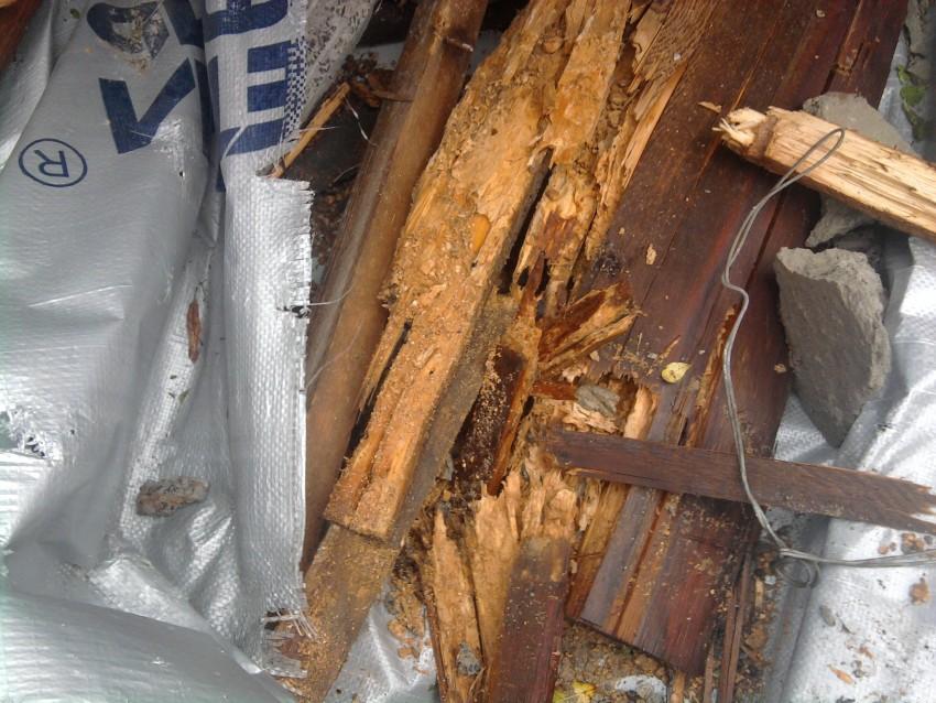 доски которые использовались при капремонте, труха!!!