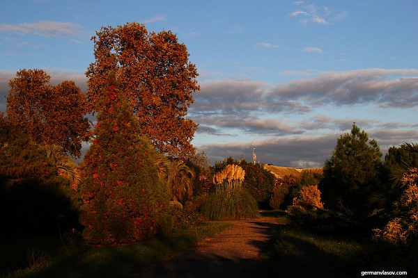 Парк Южные Культуры. Адлер. Осень