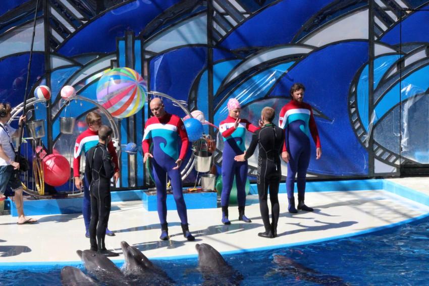Где снимали фильм подарок с характером дельфинарий