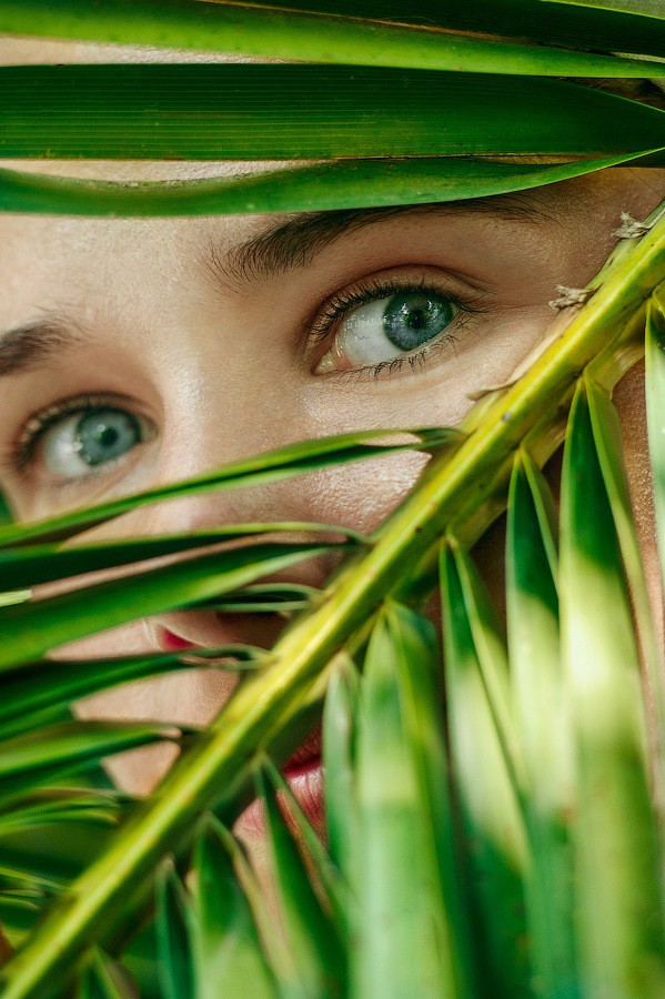Jungle eyes