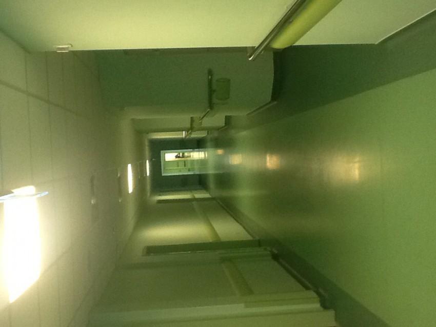 Бесконечный коридор. Точнее их два, расположены параллельно, а между ними подсобные помещения (которые получаются без окон, естественно)