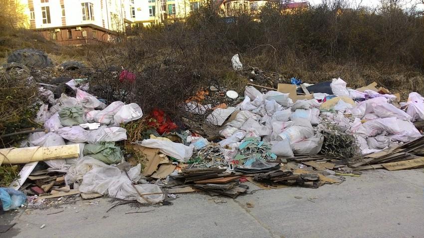 Соболевка и ее мусорки вдоль дороги...
