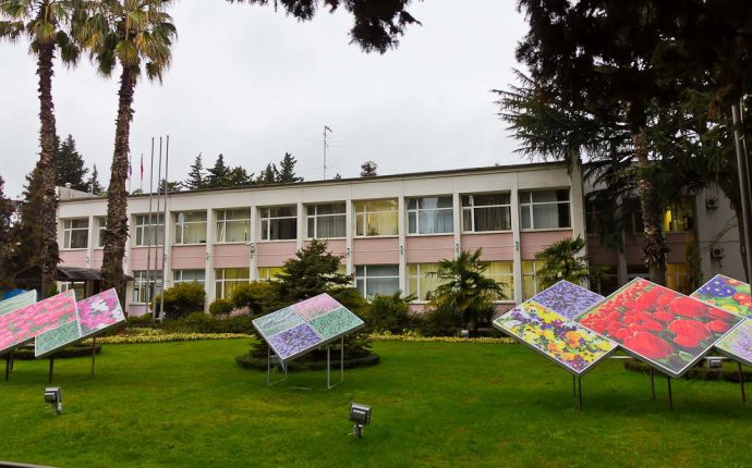 Администрация адлерского района, Сочи
