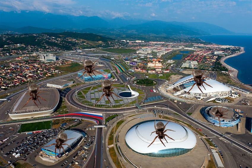 Жители Сочи заявили о нашествии неизвестных насекомых