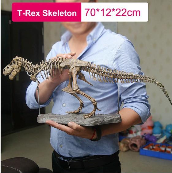 Скелет динозавра модель-конструктор 70см