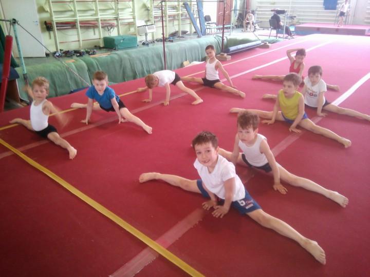 Тренер по спортивной гимнастике. Индивидуально